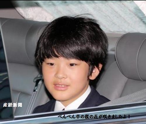 悠仁さま13歳のお誕生日