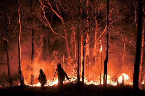 オーストラリアの森林火災