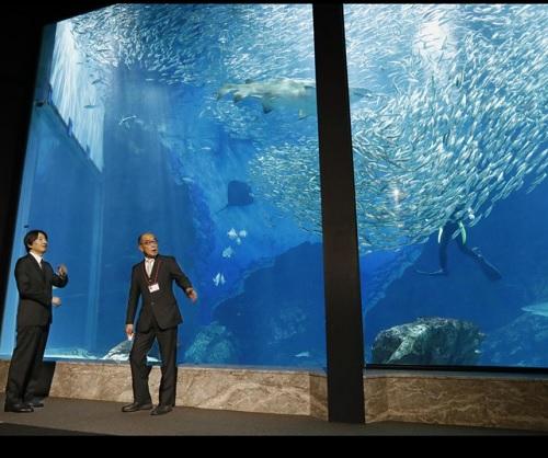 秋篠宮さま水族館を視察