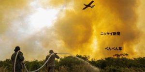 ブラジル大湿原で大規模火災