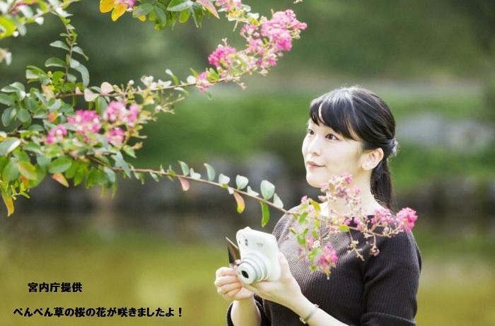 眞子さま29歳のお誕生日