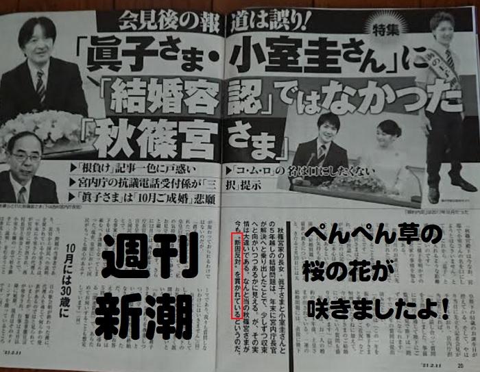 秋篠宮殿下は眞子×小室圭の結婚に断固反対