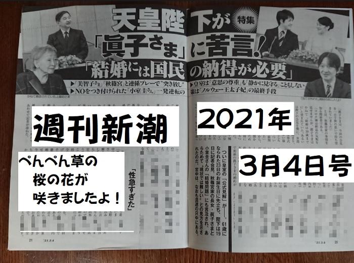 週刊新潮2021年眞子サン結婚問題天皇誕生日会見