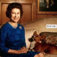 エリザベス英女王に新しい子犬、英紙報道